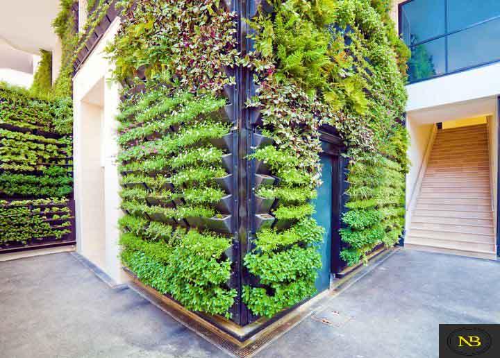 گرین وال Green Wall