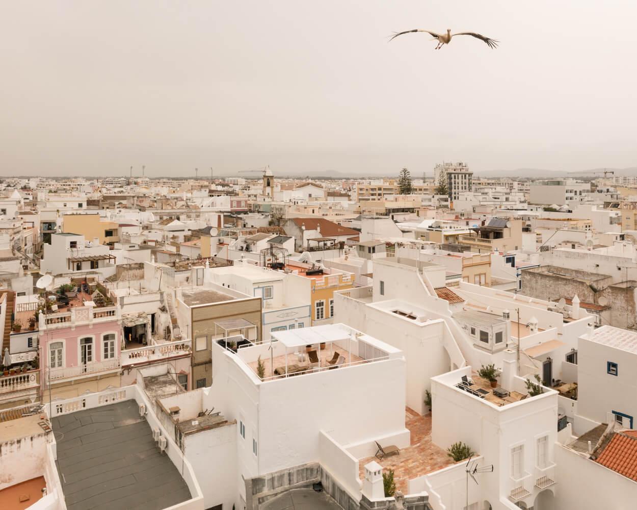 اخبار معماری، طراحی داخلی و دکوراسیون داخلی منزل در پرتغال ۲۰۲۱