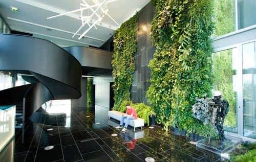 اجرای دیوار سبز در مشهد طراحی نیما بلواسی  | قیمت دیوار سبز | فروش لوازم دیوار سبز | جزئیات دیوار سبز | دیوار سبز مشهد | ساخت دیوار سبز در مشهد